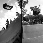 Two angles of Greyson Fletcher's stalefish.  Photos: Tobi Hees