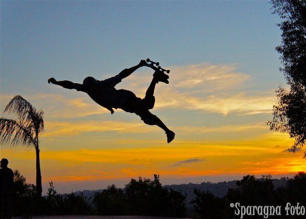 Bucky Lasek, judo air, Lasekland
