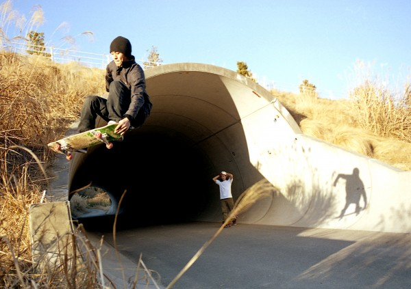 Kanko. Lien to tail.  Photo: WADAPP