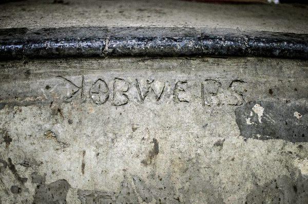 kobwebs